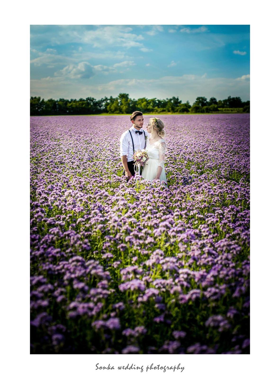 Wedding photography - Obrázek č. 18