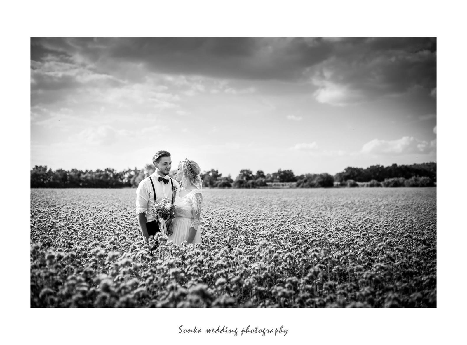 Wedding photography - Obrázek č. 19
