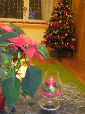 Zbožňujem vianočnú atmosféru :-)