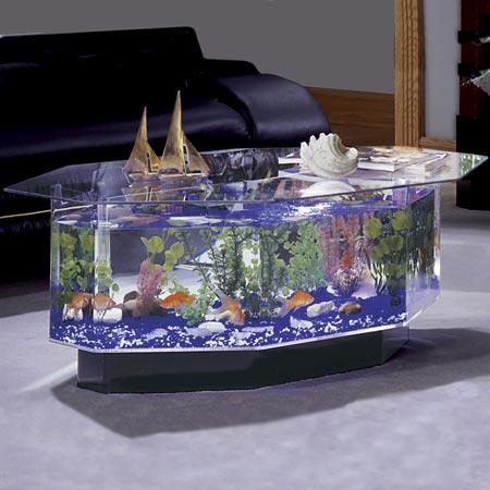 Život s rybičkami :) - Obrázok č. 30