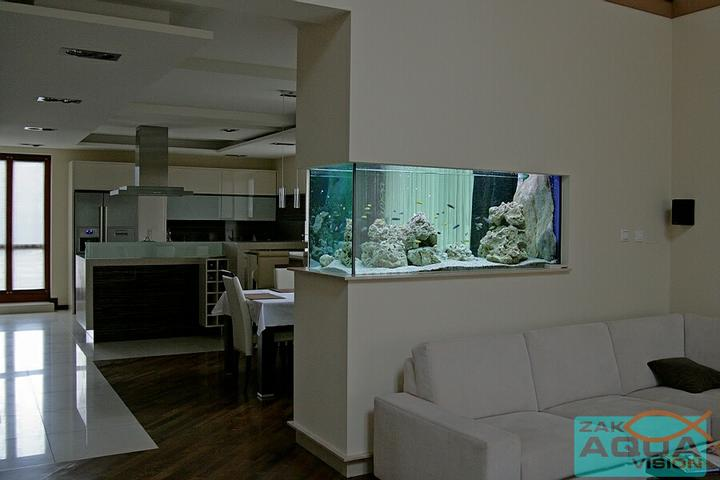 Život s rybičkami :) - Obrázok č. 43