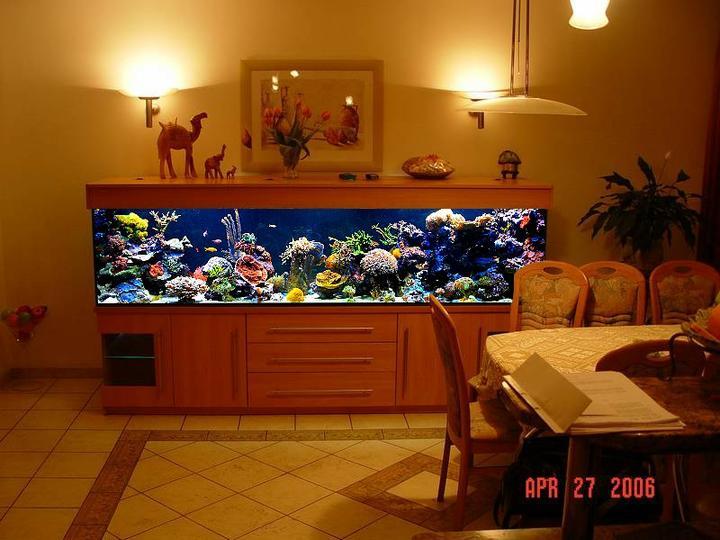 Život s rybičkami :) - Obrázok č. 96