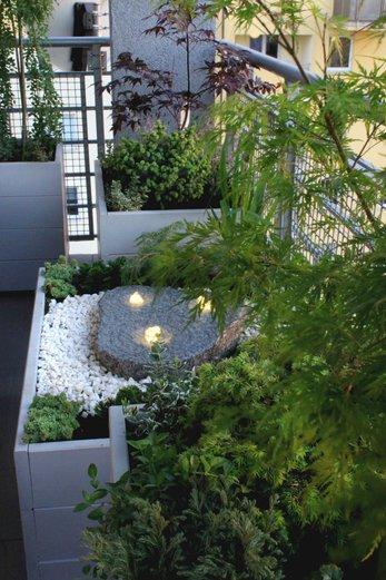 ... na balkóne - Obrázok č. 112