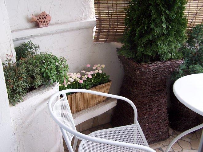 ... na balkóne - Obrázok č. 118