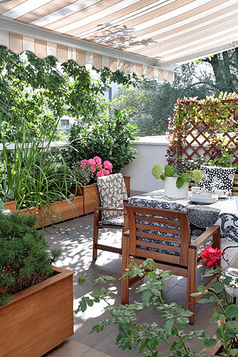 ... na balkóne - Obrázok č. 170