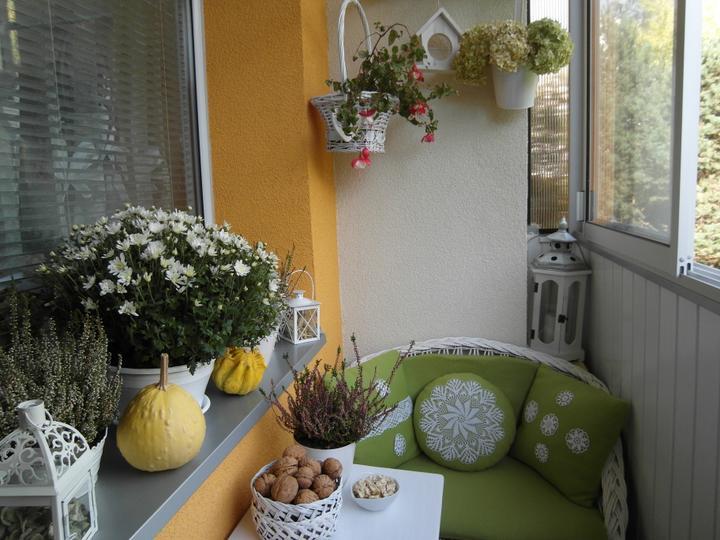 ... na balkóne - fotka od janka64