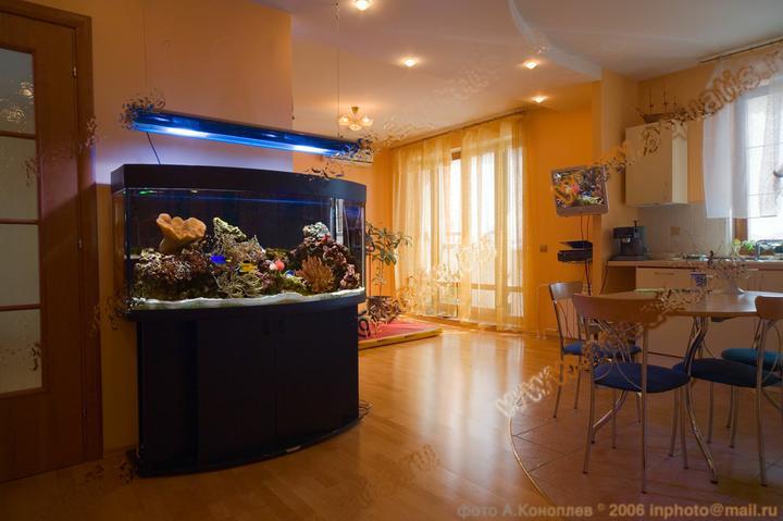 Život s rybičkami :) - Obrázok č. 110