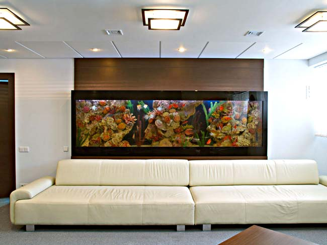 Život s rybičkami :) - Obrázok č. 120