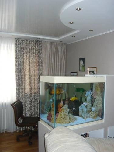 Život s rybičkami :) - Obrázok č. 171