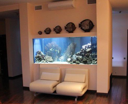 Život s rybičkami :) - Obrázok č. 175