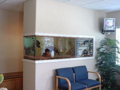Život s rybičkami :) - Obrázok č. 193