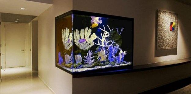 Život s rybičkami :) - Obrázok č. 201