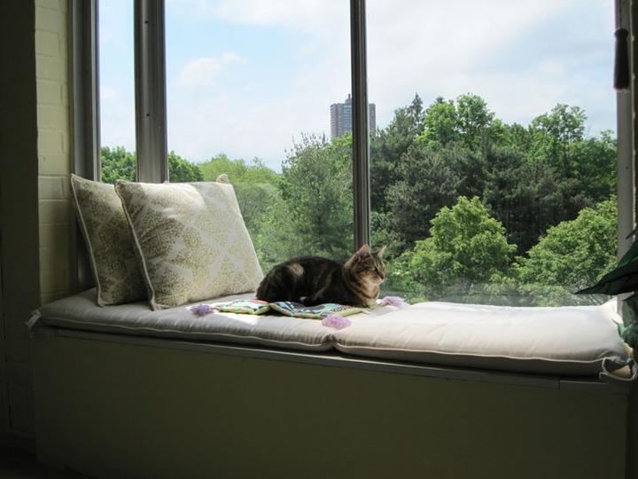 Sedenie pri okne :-) - Obrázok č. 56