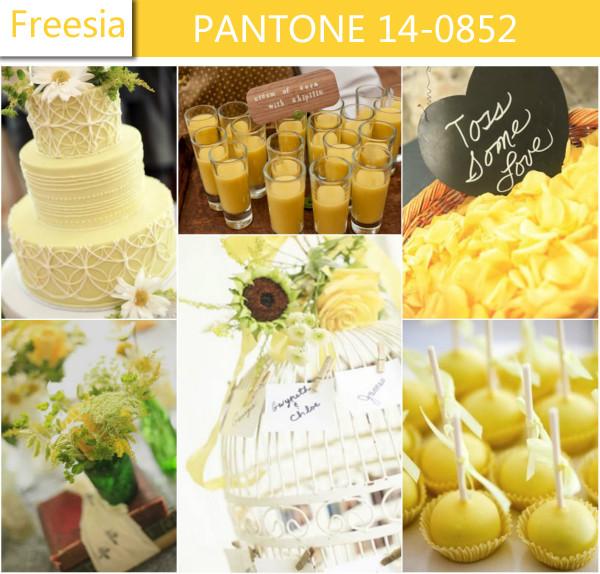 2014 - Freesia - Obrázek č. 13