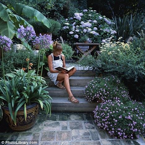 Zahrada bez klasického trávníku - Obrázek č. 5