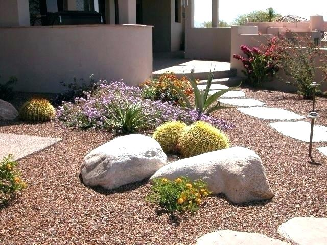 Zahrada bez klasického trávníku - Obrázek č. 9
