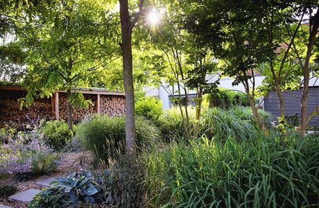 Zahrada bez klasického trávníku - Obrázek č. 12