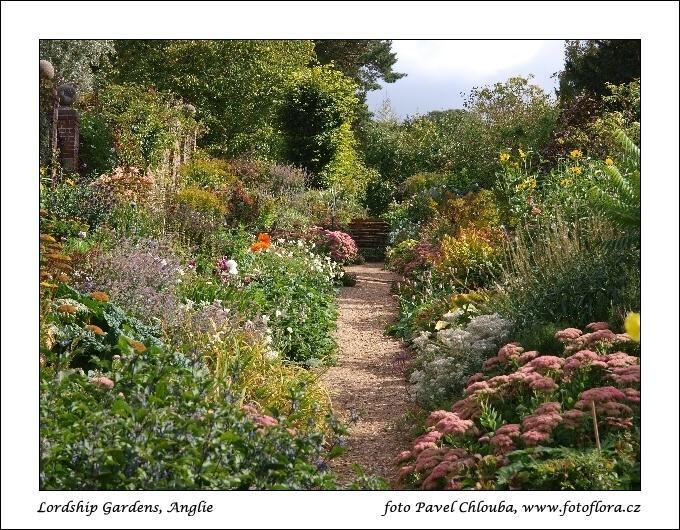 Zahrada bez klasického trávníku - Obrázek č. 15