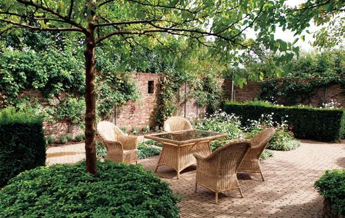 Zahrada bez klasického trávníku - Obrázek č. 18