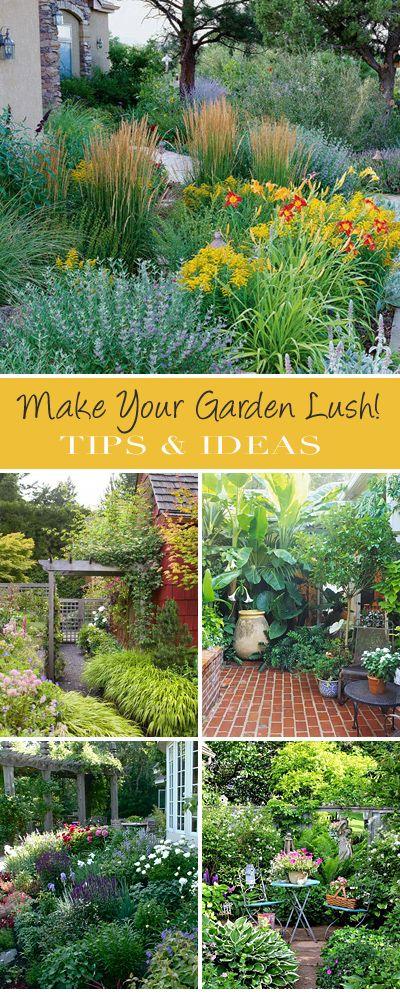 Zahrada bez klasického trávníku - Obrázek č. 23