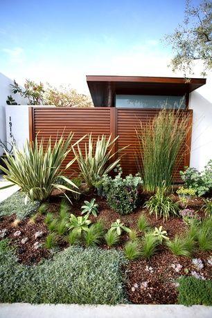 Zahrada bez klasického trávníku - Obrázek č. 24