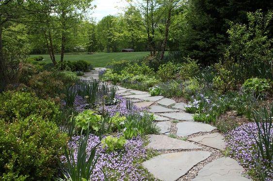 Zahrada bez klasického trávníku - Obrázek č. 28