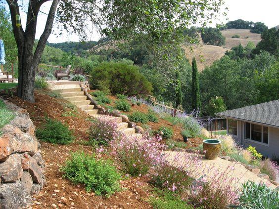 Zahrada bez klasického trávníku - Obrázek č. 30
