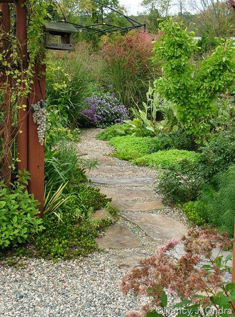 Zahrada bez klasického trávníku - Obrázek č. 60