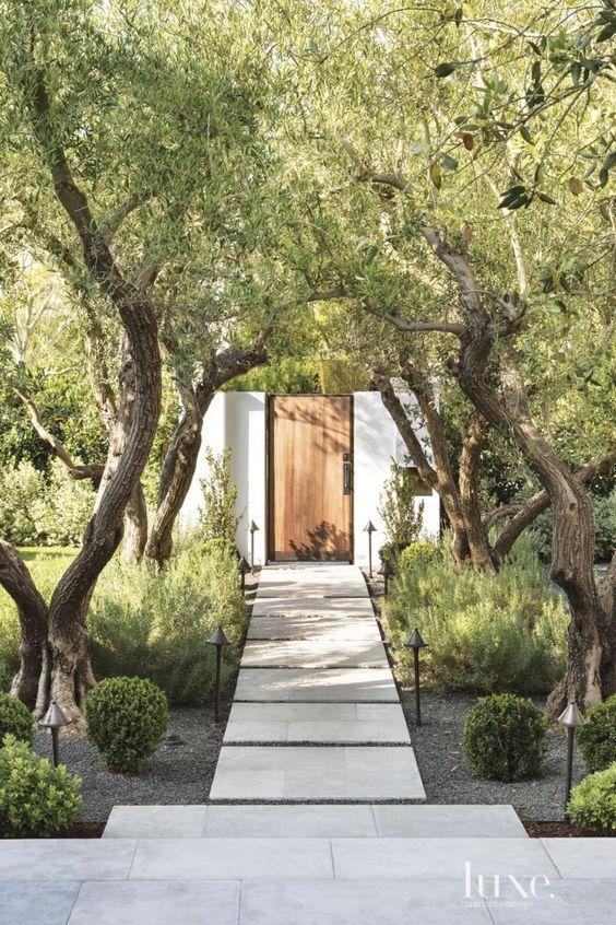 Zahrada bez klasického trávníku - Obrázek č. 64