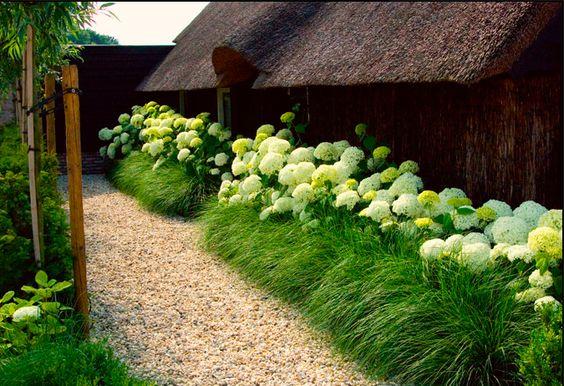 Zahrada bez klasického trávníku - Obrázek č. 65