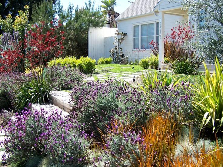 Zahrada bez klasického trávníku - Obrázek č. 78