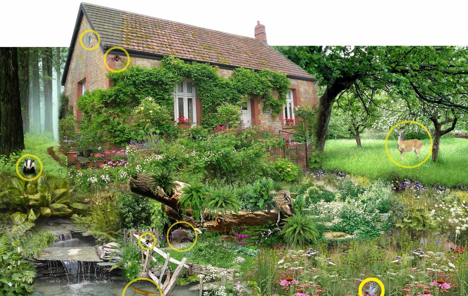 Zahrada bez klasického trávníku - Obrázek č. 91