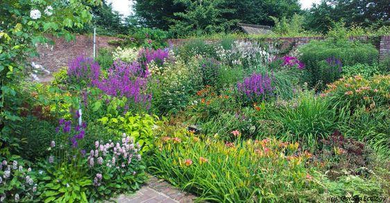 Zahrada bez klasického trávníku - Obrázek č. 92