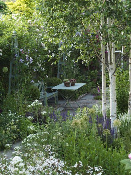 Zahrada bez klasického trávníku - Obrázek č. 93