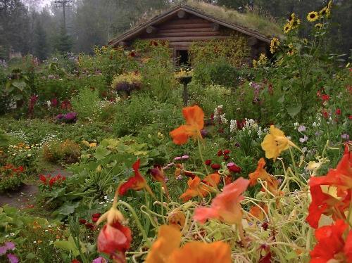 Zahrada bez klasického trávníku - Obrázek č. 94