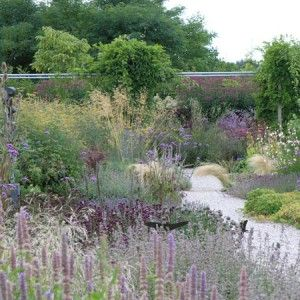 Zahrada bez klasického trávníku - Obrázek č. 95