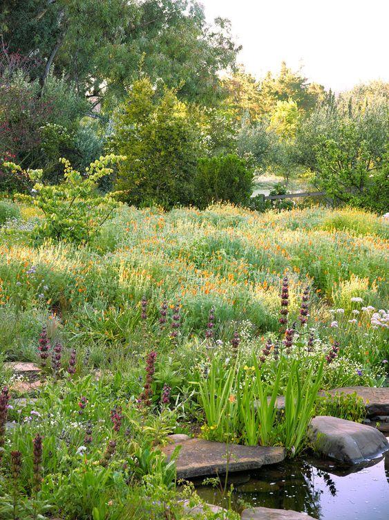 Zahrada bez klasického trávníku - Obrázek č. 96