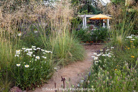 Zahrada bez klasického trávníku - Obrázek č. 97