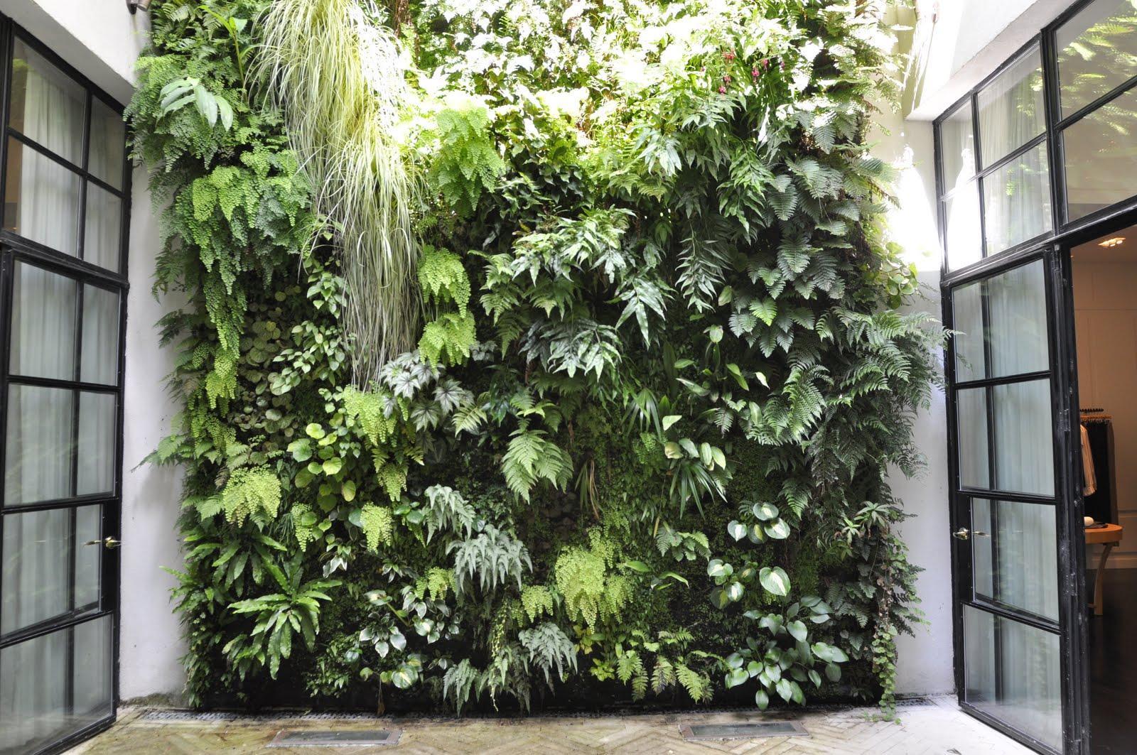 Zahrada bez klasického trávníku - Obrázek č. 99