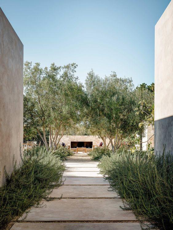 Zahrada bez klasického trávníku - Obrázek č. 109