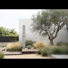 Zahrada bez klasického trávníku - Obrázek č. 110