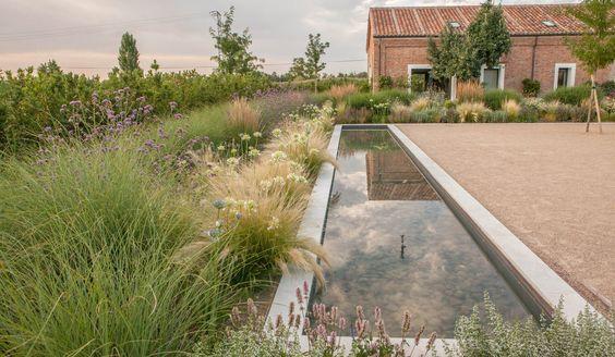 Zahrada bez klasického trávníku - Obrázek č. 118