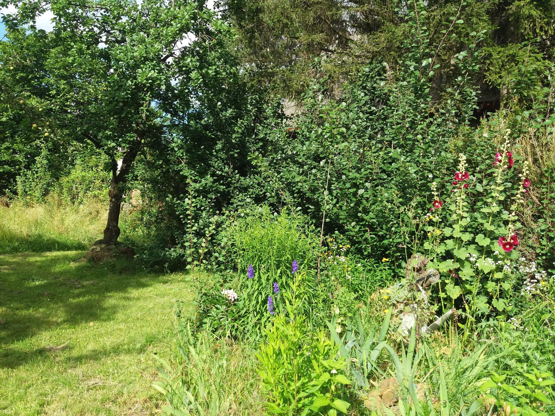 Dům se zahradou propojený - Obrázek č. 14