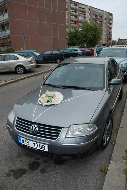 Sandra KARETOVÁ{{_AND_}}Luboš PAVLÍK - Auto nevěsty...