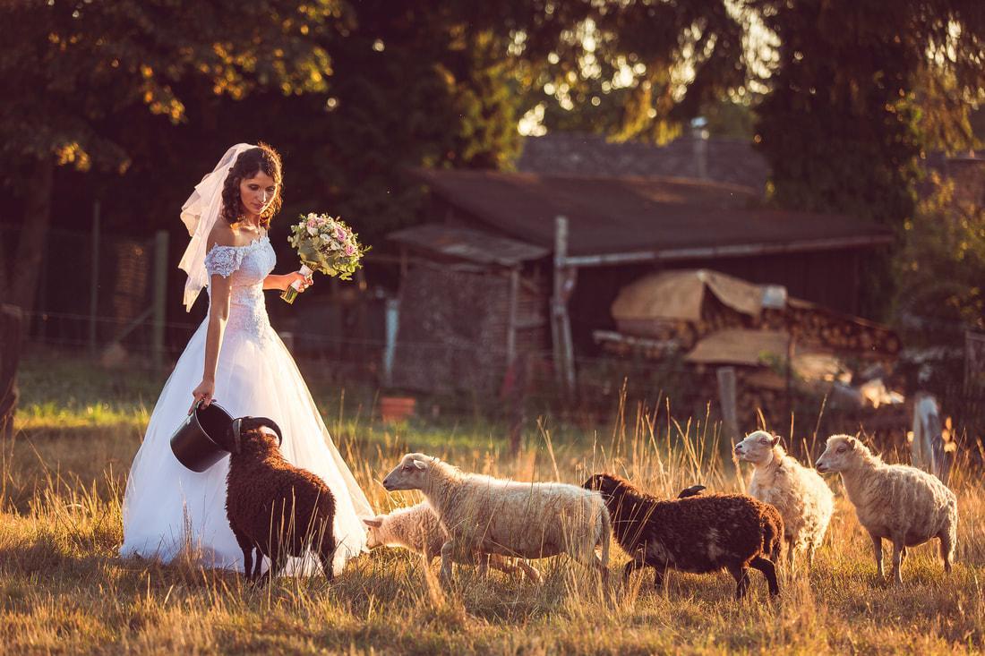 Hezký den milá nevěsto,  termín... - Obrázek č. 1