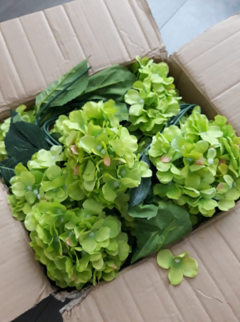 zelená hortenzia kvety - Obrázok č. 3