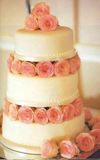 Zaciatok... - Nasa torta ;-)