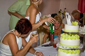 ... svatební dort byl úžasný děkuji moc paní Pudové - vpřípadě zájmu dám kontakt :o)))) ...