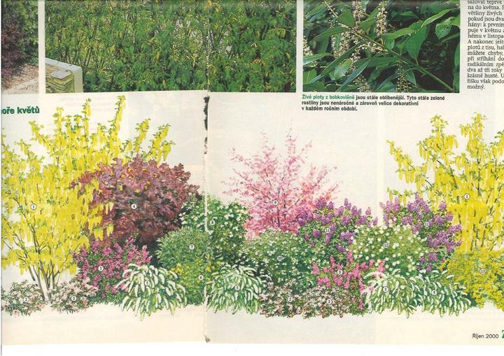 Zahrada - inspirace - Obrázek č. 79