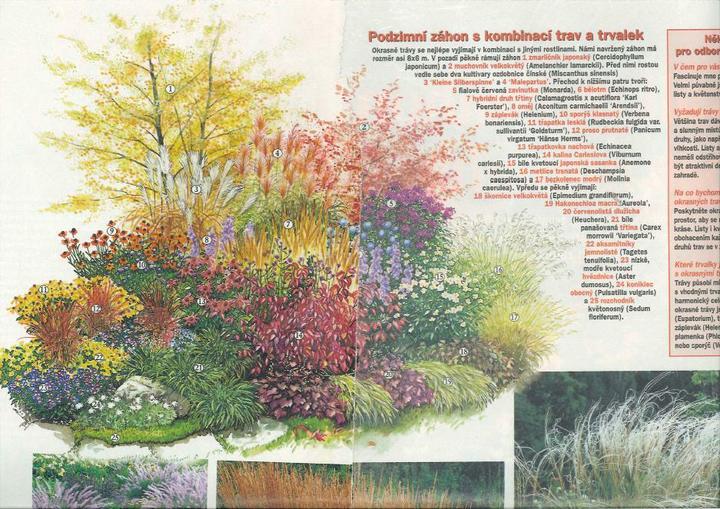 Zahrada - inspirace - Obrázek č. 83